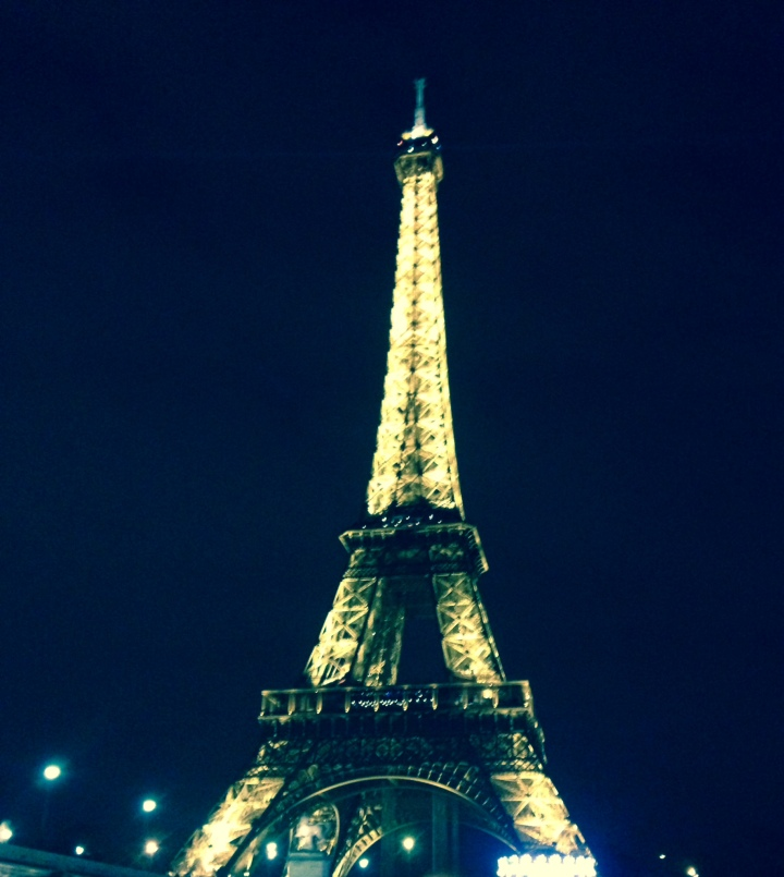 taken from the seine river, during a cruise on valentine's day.